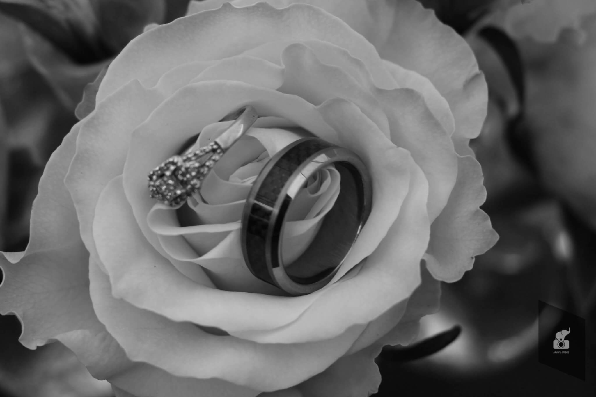 wedding rings photography by Airavata Studios