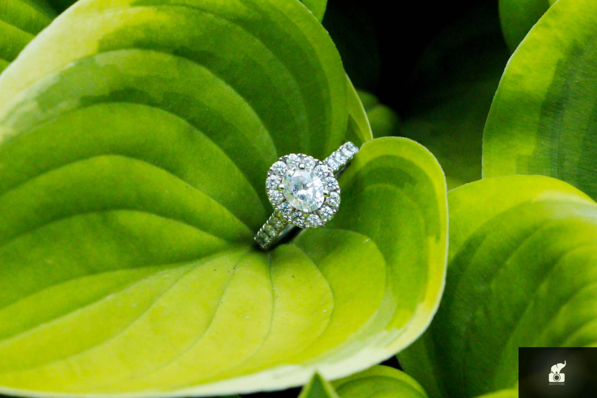 Engagement Ring photography by Airavata Studios