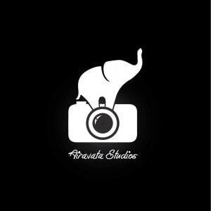 About Airavata Studios - Ann Arbor Wedding Photographer